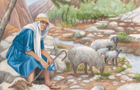 מוגן: נספחים והרחבות ליום הרועה
