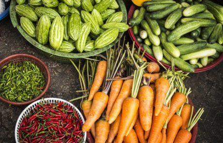 פרי עמל- על ההיבטים הרוחניים והפילוסופיים של חקלאות